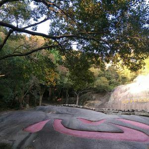 心字石旅游景点攻略图