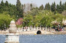 """翠湖公园,昆明的""""小西湖"""""""