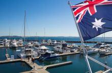 悉尼观鲸圣地的另类玩法