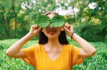 【杭州】九溪烟树在溪中溪里做个最江南的女子