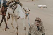 #主题交通#骑着骆驼颠进了撒哈拉沙漠