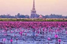 樱花比日本清新,美食比新加坡道地,这个暗藏惊喜的国度正式免签证费!