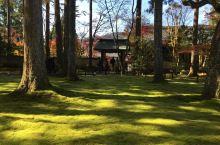 京都红叶行7