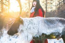 国内冬季雪景去哪儿看|呼伦贝尔敖鲁古雅驯鹿部落