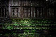 在崩密列寻找古墓丽影的踪迹