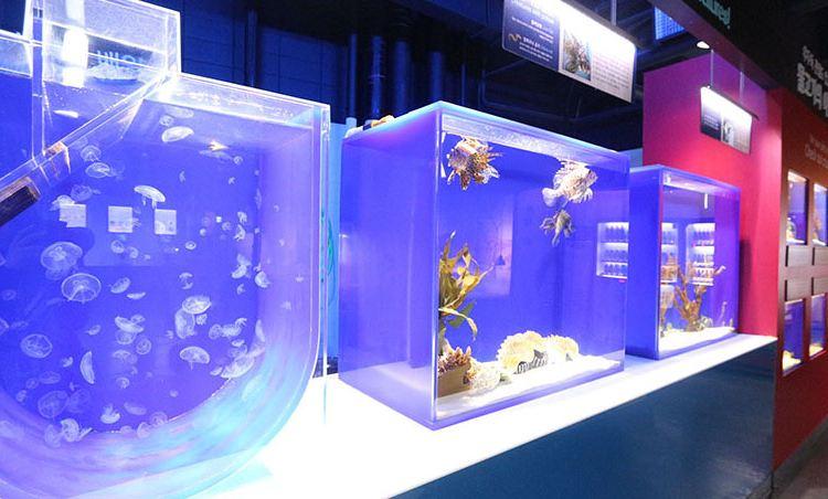 COEX水族館4