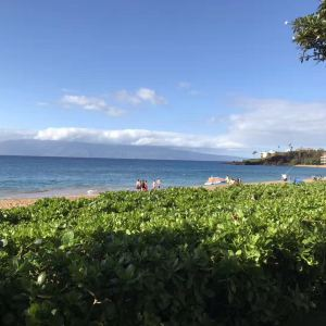 茂宜岛旅游景点攻略图