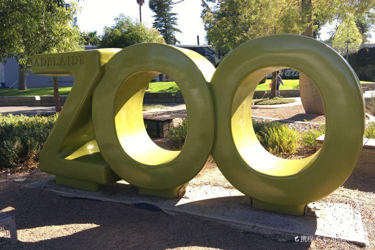 Adelaide Zoo4