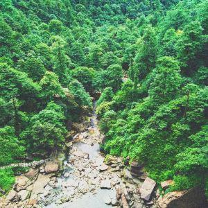 小草坝生态旅游区旅游景点攻略图