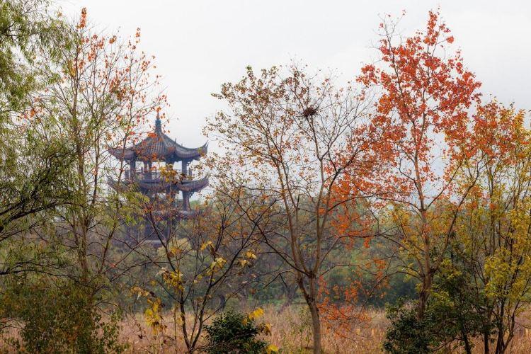 西溪國家濕地公園·洪園2