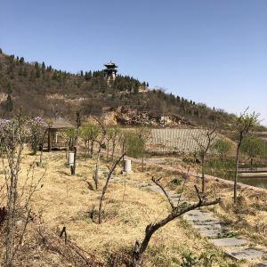 五岩山景区旅游景点攻略图