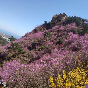 大珠山风景区旅游景点攻略图