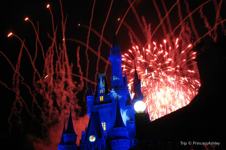 Wishes Nighttime Spectacular1