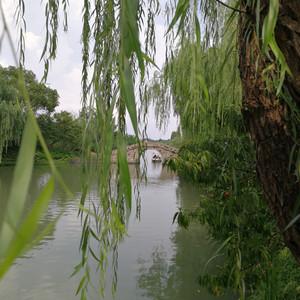 乌镇游记图文-华东五市,黄山,千岛湖跟团游