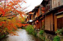 年末啦!收工去京都看最后的红叶!