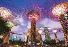 4日新加坡·特色肉骨茶+环球影城+幸福摩天轮