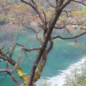 卧龙海旅游景点攻略图