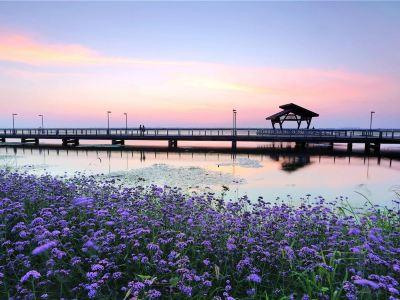 Yangcheng Lake Peninsula Tourist Resort