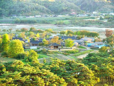 安東河回村