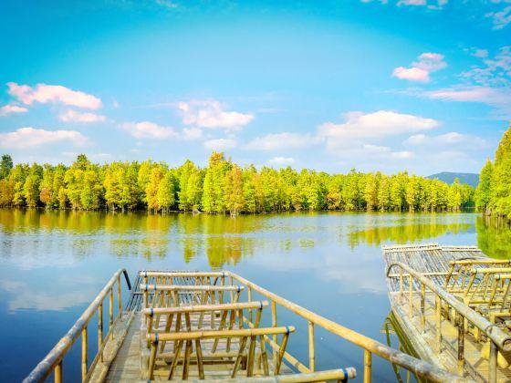 尚湖風景区