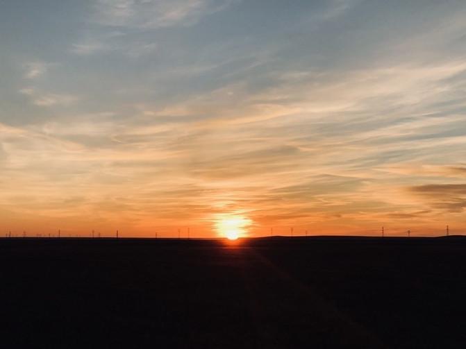 呼伦贝尔大草原 一万个人眼中有一万种呼伦贝尔大草原的秋 – 呼伦贝尔游记攻略插图119