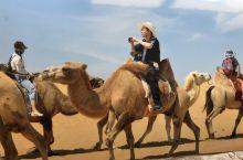 阳光、沙漠、骆驼队——鄂尔多斯响沙湾之旅(王志明)