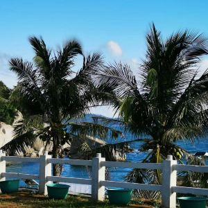 三角洲岛-潜水区旅游景点攻略图