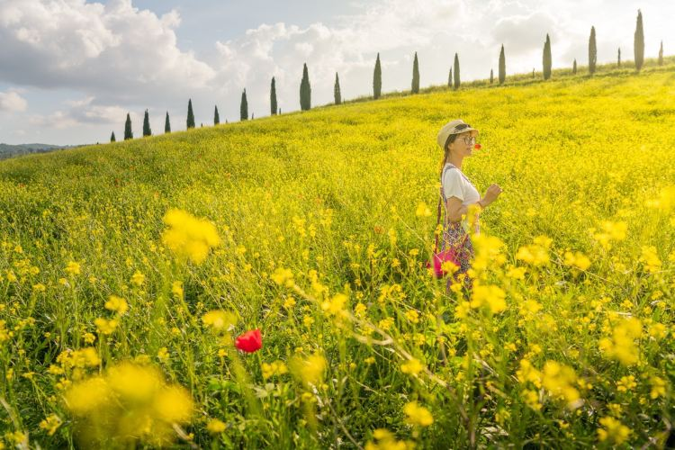 Val d'Orcia3