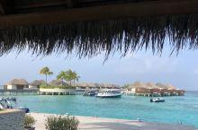 2017年11月17-23日马尔代夫宁静岛