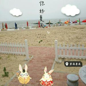 碧海浴场旅游景点攻略图