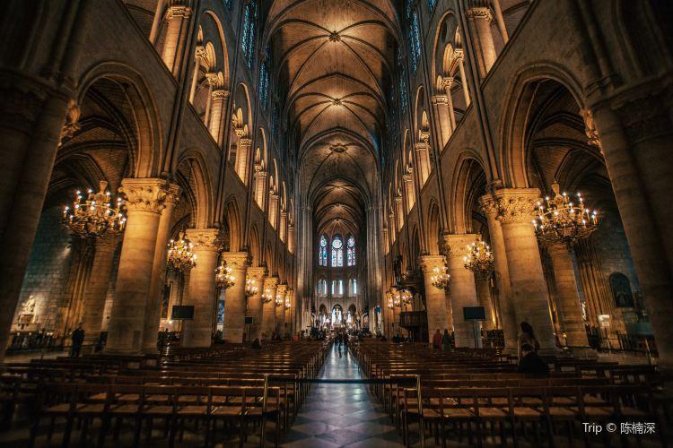 Cathédrale Notre-Dame de Paris4