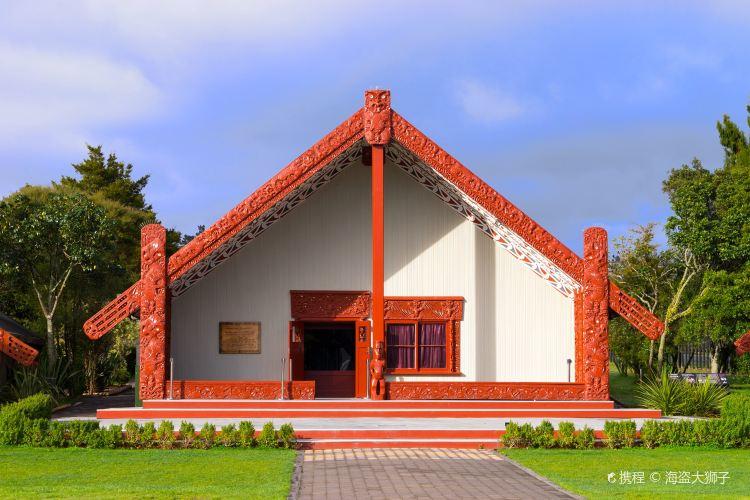毛利文化村3