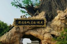 山西·洪洞·大槐树