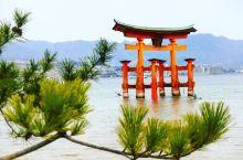 日本嚴島神社