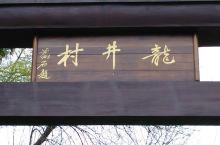美丽的茶文化龙井游记