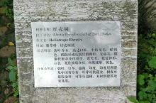 靖江王府五福
