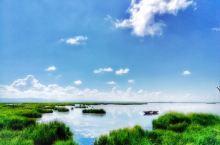 若尔盖花湖 花湖是若尔盖很值得去的一个地方,最佳时间是就五六月,那个时候湖畔五彩缤纷,好像云霞委地,