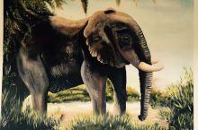 非洲艺术风情