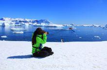 大自然的行为艺术-南极洲的精灵