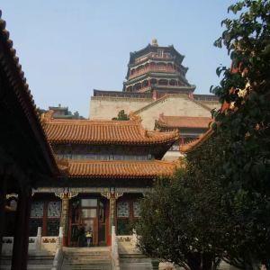 佛香阁旅游景点攻略图