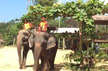 骑着大象过河