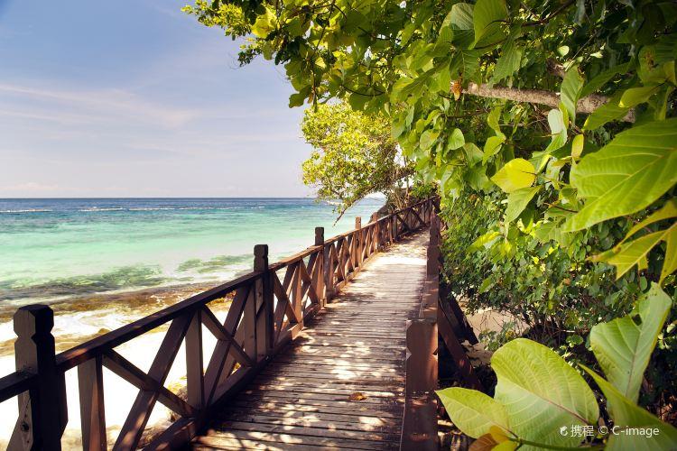 Payar Island2