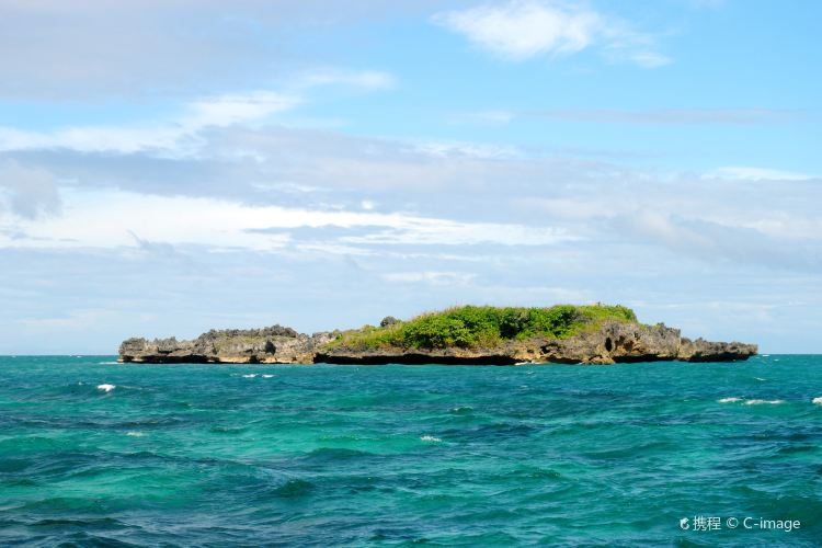 Crocodile Island1
