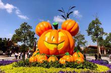 """魔都万圣节""""鬼混""""去处,一年中最放肆的Halloween!"""