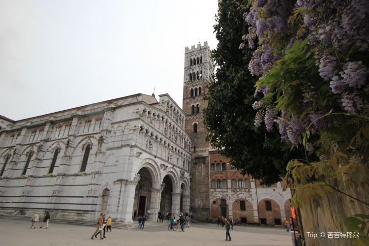 Duomo di San Martino1