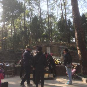 毛泽东双亲墓旅游景点攻略图