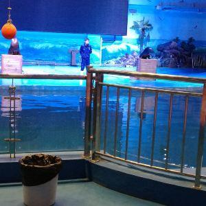 长沙海方海洋公园旅游景点攻略图