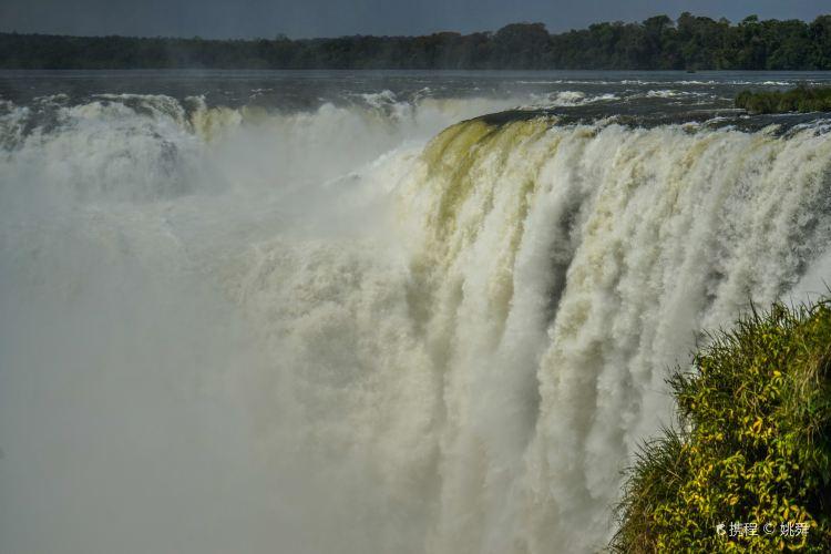 Iguazu National Park2