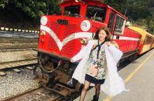 台湾阿里山小火车🚂