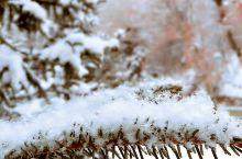 王母宫景区冬季